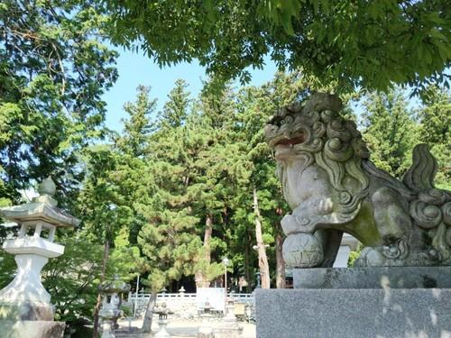 プロフィール|東京お散歩写真サークル