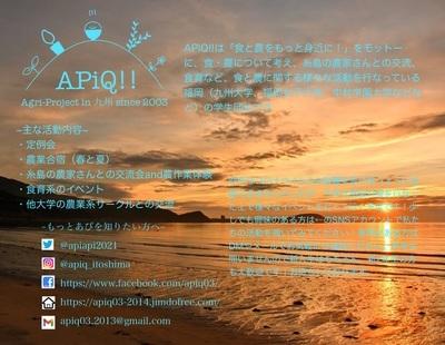 プロフィール|APiQ!!