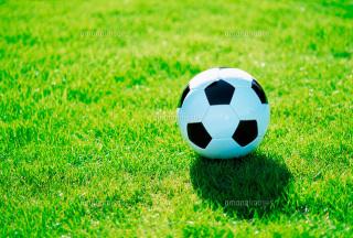 プロフィール|Gakuスポーツアカデミーサッカースクール