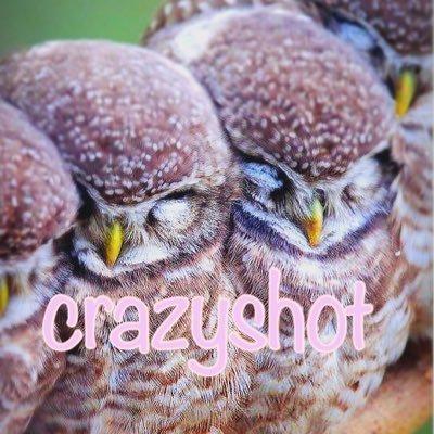 プロフィール画像|crazyshot